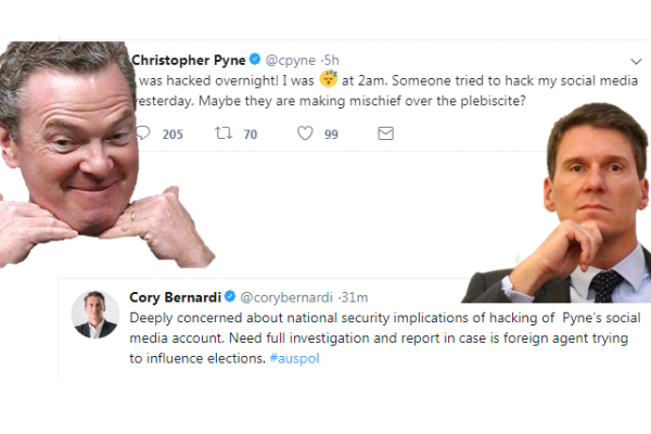 Article image for Cory Bernardi: Christopher Pyne blames hacker for Twitter porn mishap