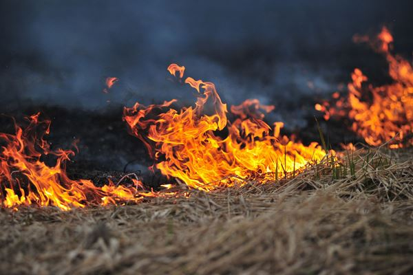 Article image for Residents urged to have fire plan ready ahead of extreme temperatures