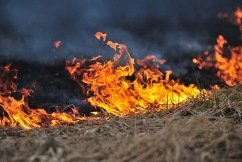 NSW on alert: Total fire bans issued across the state