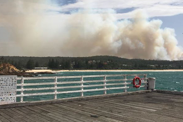Article image for Tathra disaster: What residents can do now