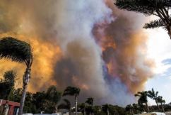 'Lucky no one lost their lives' as Tathra is declared disaster zone