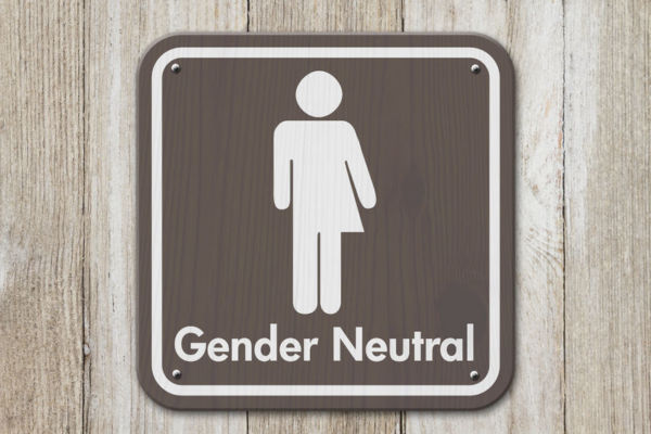 Article image for Move for gender-neutral birth certificates slammed as 'lefty lunacy'