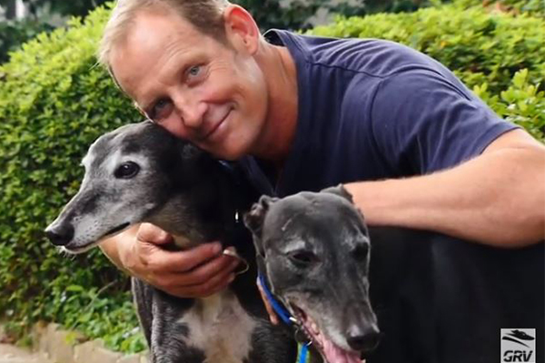 Article image for National Greyhound Adoption Day