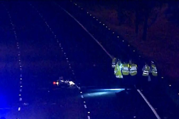 Article image for Motorcyclist and kangaroo killed in freak M4 accident