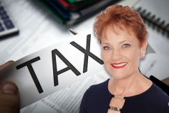 One Nation tension isn't because of company tax cuts, Liberal Democrats Senator says