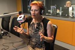 Pauline Hanson blames 'nose rings and tattoos' for unemployment