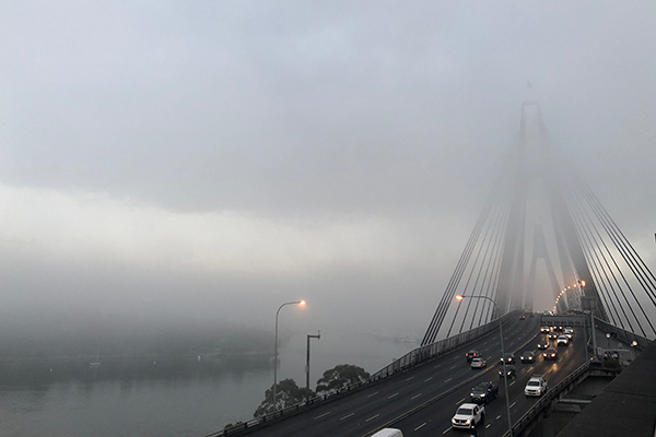 Article image for Thick fog covers Sydney, cancels flights and ferries