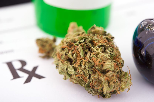 Article image for Study finds Australian doctors confused by medicinal cannabis