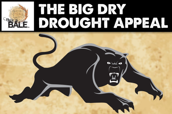Article image for Panthers donate over $100,000 to drought-stricken farmers