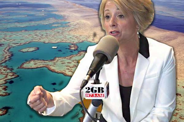 Article image for 'We're running out of patience here': Labor demands answers to 'outrageous' reef grant