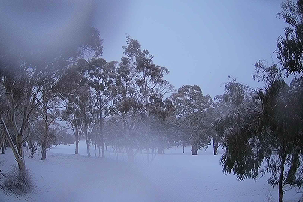 Article image for Snow falling across parts of New South Wales