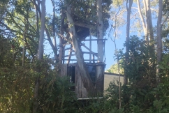 Family fight to save beloved treehouse from energy provider