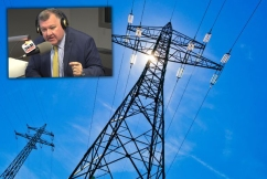 Craig Kelly 'can't see' how NEG can lower power prices