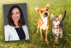 Residents told how many pets they're allowed to own
