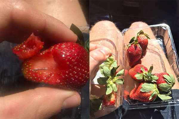 Article image for Needles found in punnet of strawberries