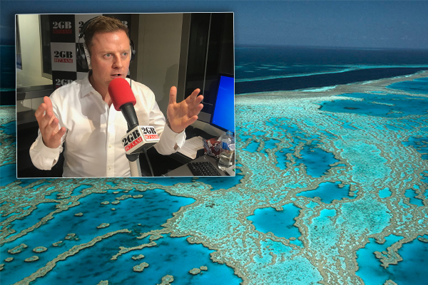 Article image for Great Barrier Reef Foundation looking for another $400 million…