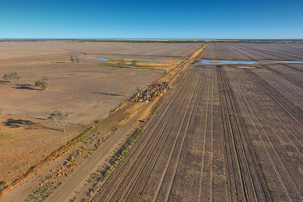 Article image for Grey nomads join fight against devastating drought