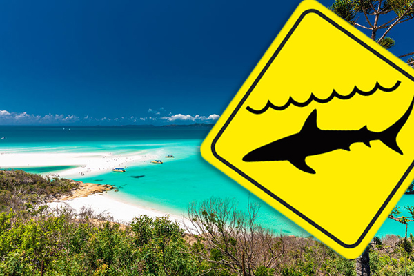 Article image for Shark attacks two people, including a child, at Hamilton Island