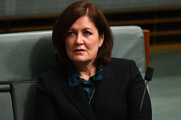 Article image for Liberal Party 'has been an absolute champion for women', says MP