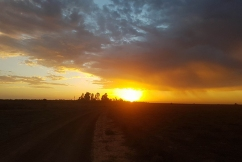 Beautiful sunrise photos as temperatures set to soar in the bush