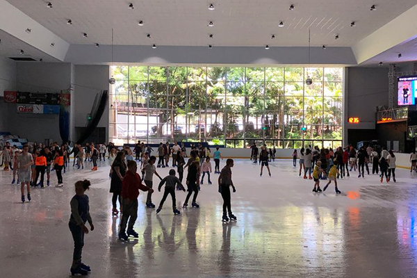 Article image for Community rallies to save Macquarie Centre's ice rink from demolition