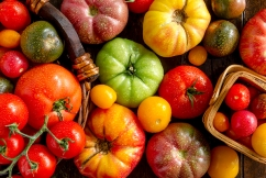 Love tomatoes? Then you'll love this