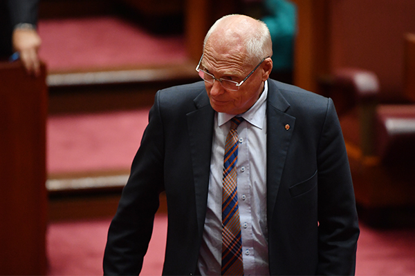 Article image for Jim Molan says wave of illegal boats was expected