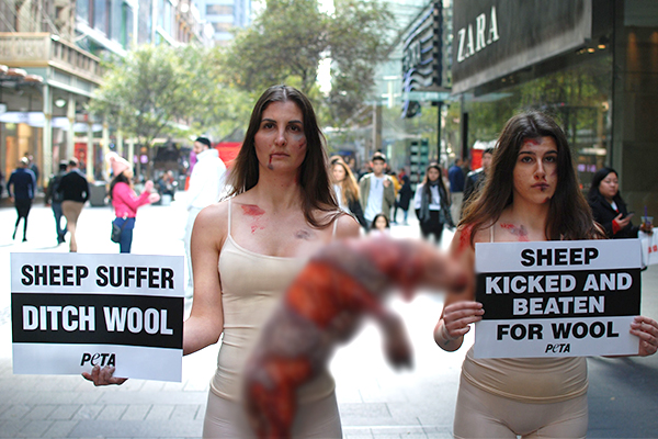 Article image for PETA stages disturbing protest in city centre