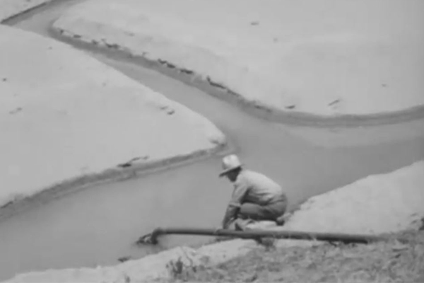 Article image for 'What would they be saying if it happened today?': Dried up Hawkesbury River in 1945