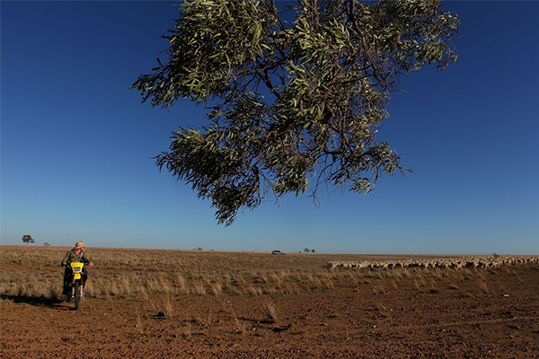 Article image for Liberal MP rubbishes plan to pay farmers to leave the land