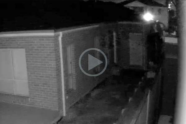 Article image for WATCH | Serial arsonist caught on camera