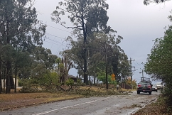 Chaos across Sydney as severe storm lashes city