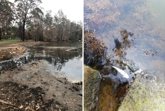 PHOTOS | Listeners reveal the disgusting state of once-thriving Lake Conjola