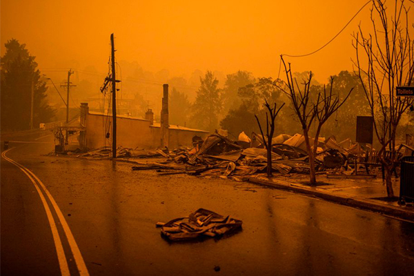 Article image for Military involvement escalated as bushfire crisis worsens