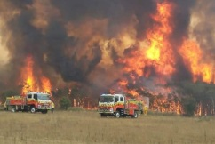 Rural towns highlight cross-border failures: Bushfire Royal Commission begins
