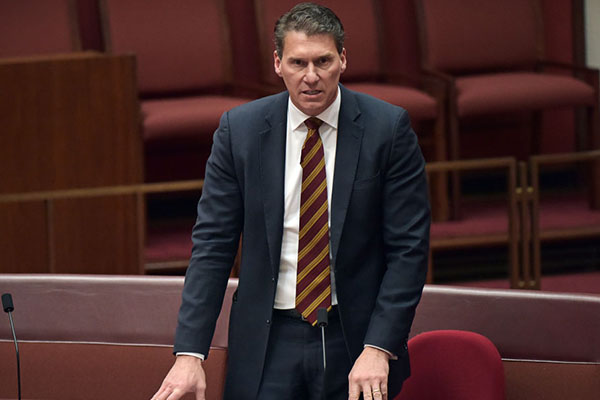Article image for 'Privacy will disappear': Cory Bernardi slams ban on $10,000 cash payments