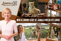 Stay with the animals at Jamala!