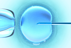 IVF patients desperate for non-essential surgery ban to be lifted