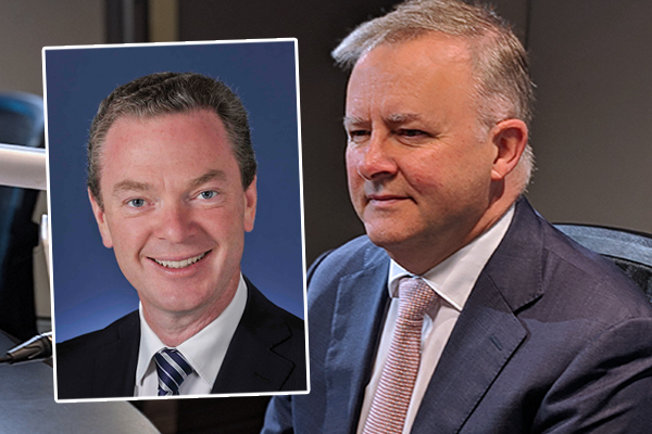 Article image for Anthony Albanese 'too sentimental' for top job says former political friend
