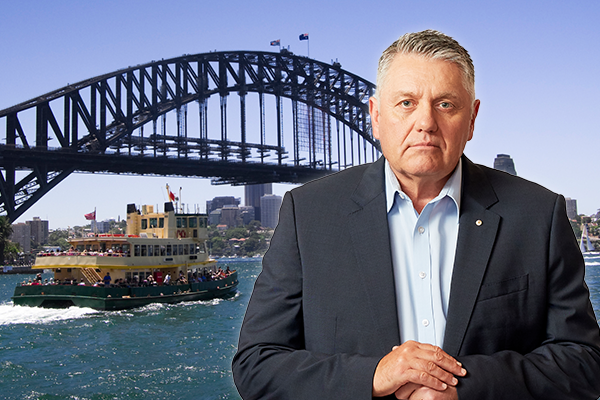 Article image for 'What sort of lunacy is this?': Calls for sacking amid ferry fiasco