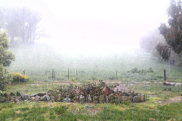 Article image for The big freeze hits NSW's central tablelands