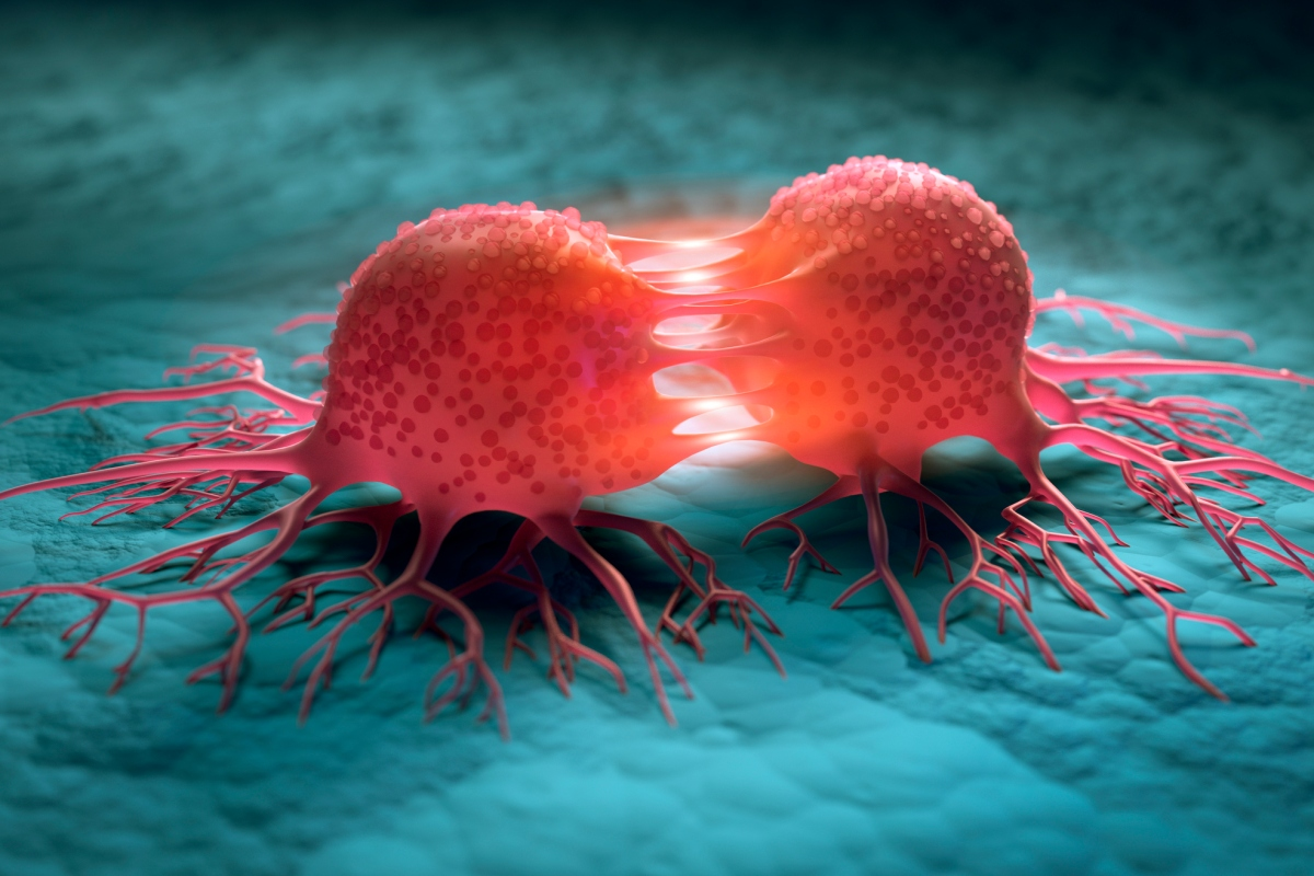 Article image for Ovarian and prostate cancer developments give 'hope for the future'