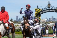 Elated Twilight Payment team celebrate Melbourne Cup victory