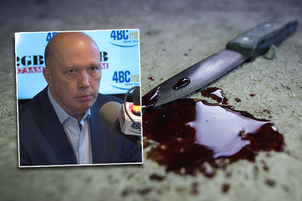 Article image for Peter Dutton hits out at 'hand-wringers' sugarcoating youth gang violence
