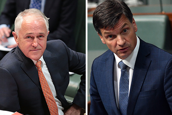 Article image for Federal Minister 'surprised' as Malcolm Turnbull to head NSW climate advisory board