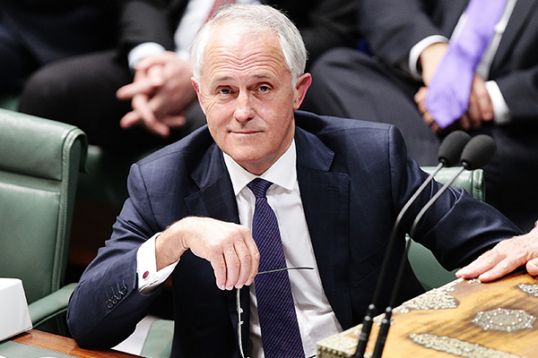 Article image for Matt Kean to recommend Malcolm Turnbull for a new climate role in NSW