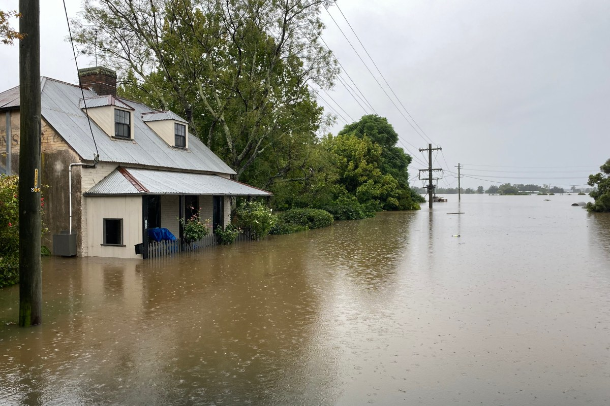 Article image for Thousands forced out of their homes as NSW flood crisis continues