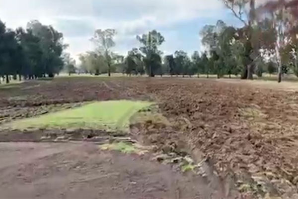 Article image for Man charged after NSW golf course 'ripped to pieces'