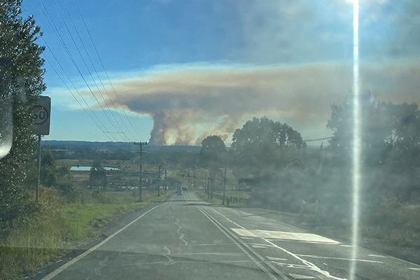 Article image for No cause for concern as Blue Mountains hazard reduction looms large