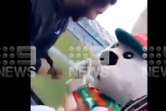 Reggie the Rabbit speaks out after mascot 'terrorised' by fans